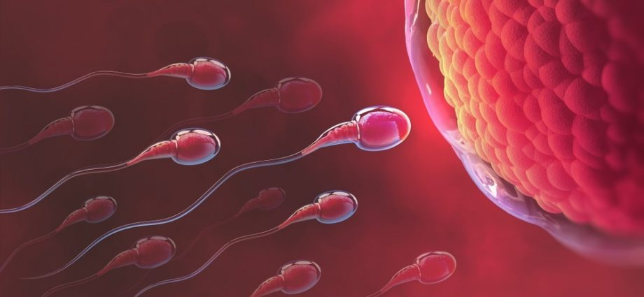 Nine Things To Do Instantly About Infertility
